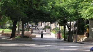 עובדי עיריית כפר סבא